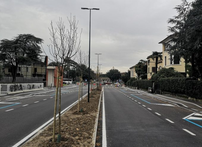 Nuove piantumazioni in viale Luporini,viale Puccini e piazzale Boccherini