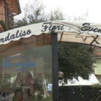 CAPANNORI – A fuoco il negozio di fiori Fiordaliso