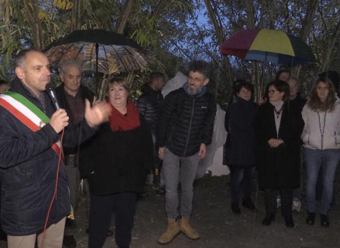 Aria di Natale con il parco naturale di Pandora illuminato a festa[VIDEO]