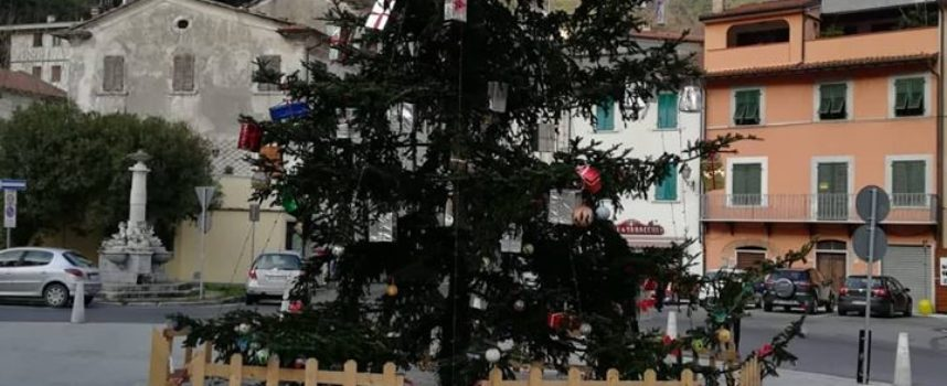 Piazza Carducci a Seravezza: l´albero è salvo!