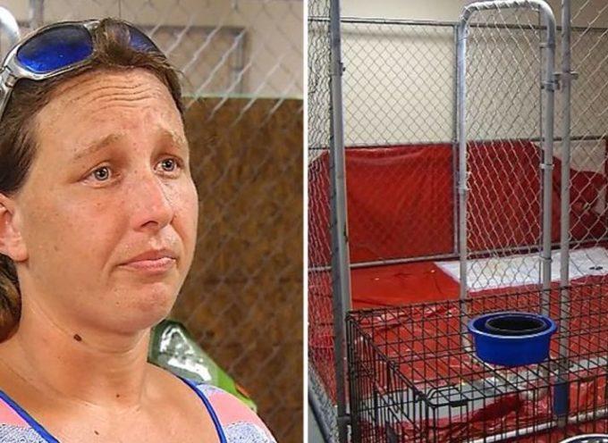 L'ingiusta detenzione di una donna che ha salvato 27 animali abbandonati nell'uragano Florence