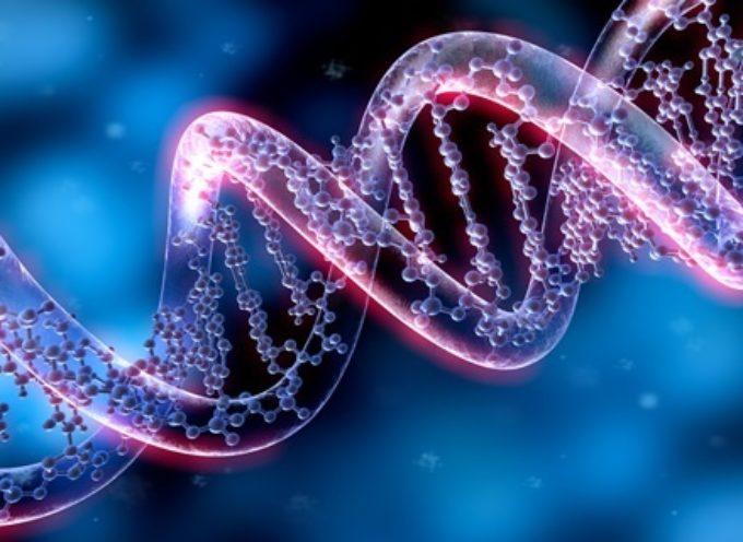 Accadde Oggi, 8 Febbraio 1865: Gregor Mendel annuncia la scoperta della Genetica