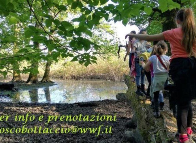Apertura Bosco del Bottaccio: calendario delle visite guidate