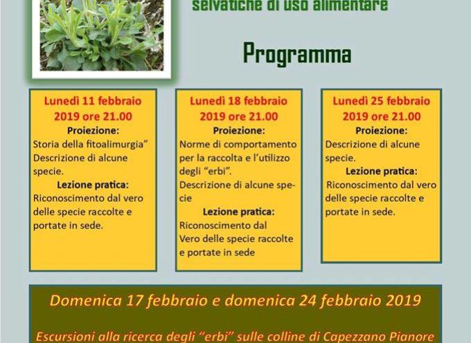 Corso elementare di riconoscimento delle erbe selvatiche di uso