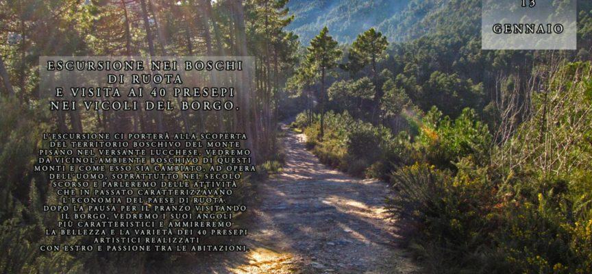 Escursione nei boschi di Ruota e visita ai 40 presepi artistici