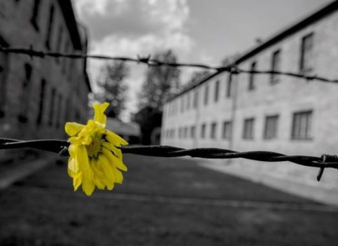 VIAREGGIO – GIORNO DELLA MEMORIA: INCONTRI, MOSTRE E SEMINARI