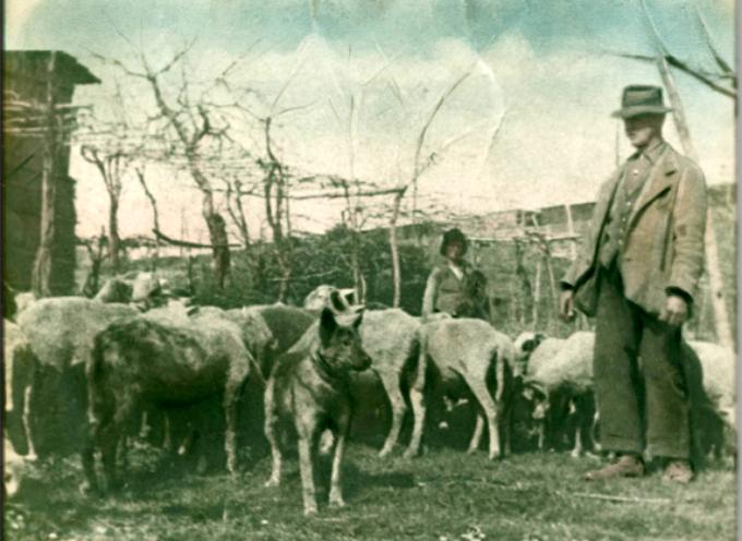 Il pastore, da sempre mestiere difficile e ingrato