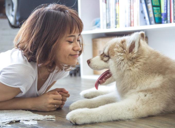 Uno studio lo conferma. L'amore tra cane e proprietario paragonabile all'amore tra madre e figlio