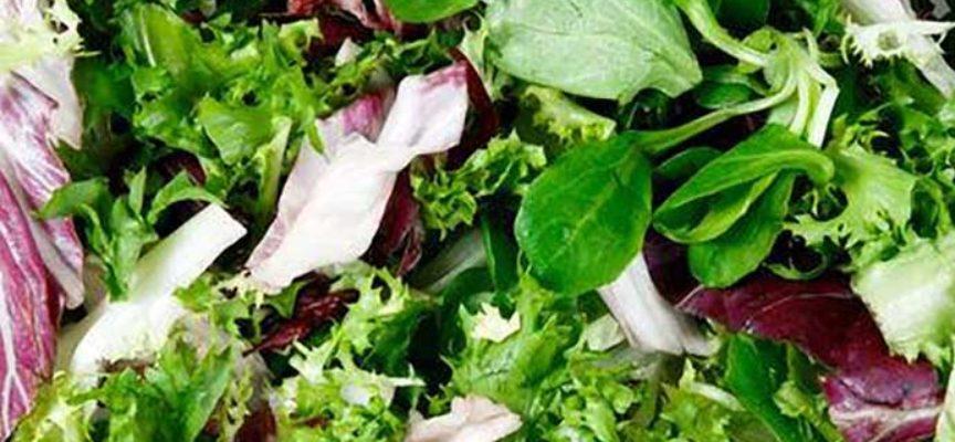 Allarme listeria: ritiro per queste 3 insalate confezionate