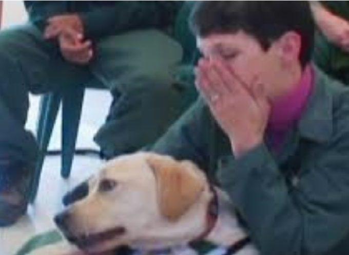 Un cane terapeutico riconosce in un prigioniero la donna che le ha insegnato a cambiare la vita