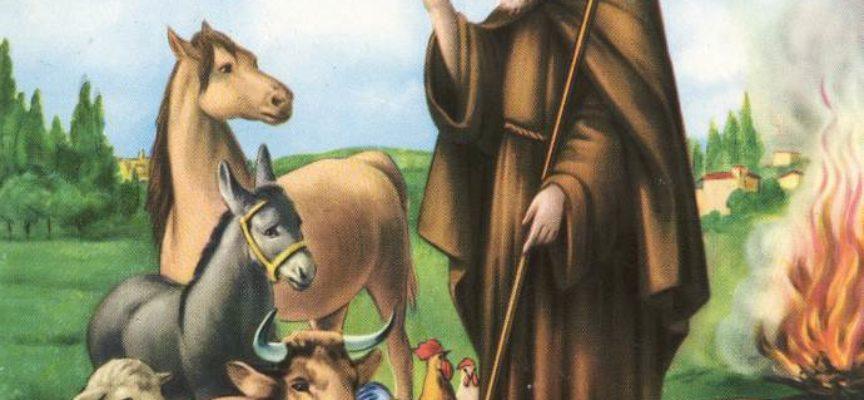 Sant'Antonio Abbate: la tradizione dei falò e il significato spirituale