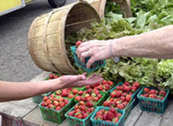 Vendita diretta prodotti agricoli. Con la Legge di bilancio 2019 cambiano le regole