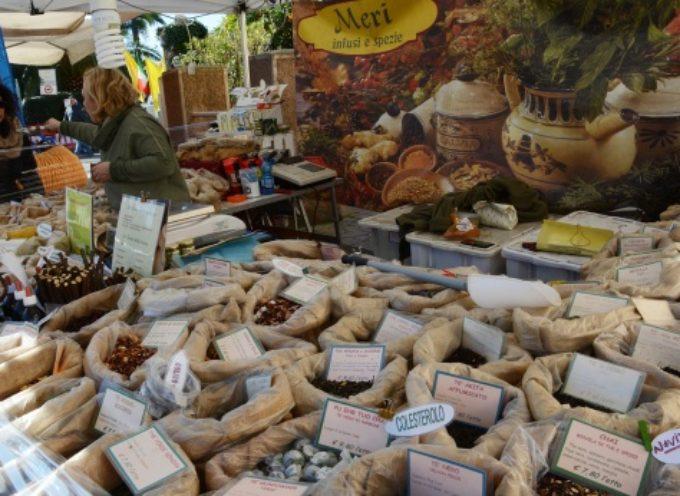 PIETRASANTA – Tradizioni: è qui la festa, San Biagio da record