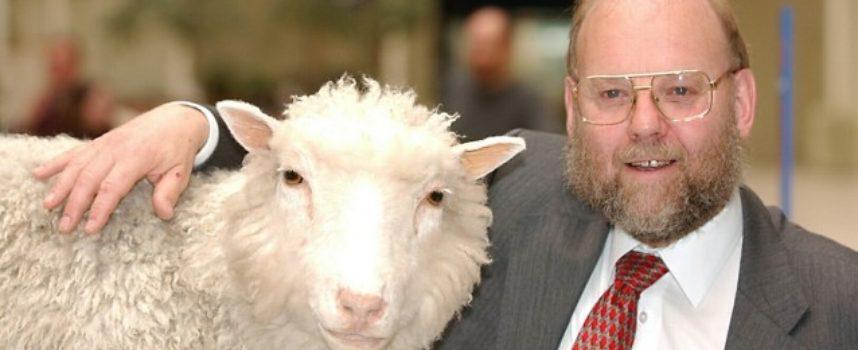 Accadde Oggi, 22 Febbraio 1997: dopo 10.000 anni di allevamento, l'uomo riesce a clonare un pecora: è Dolly