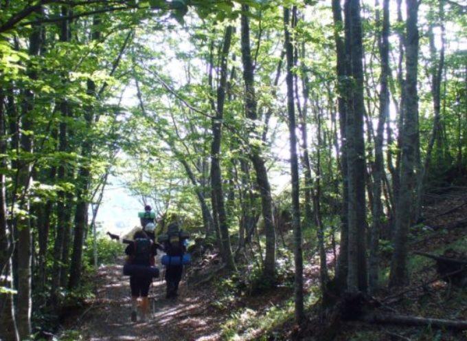 Trekking in Garfagnana: tra Colle Argegna e l'antico passo Tea
