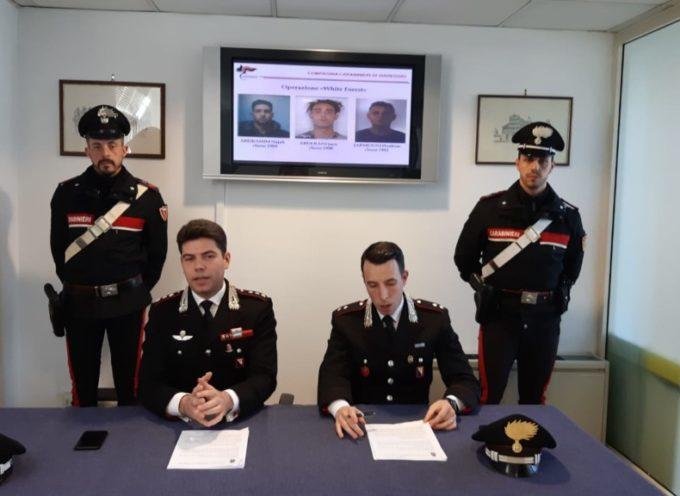 VIAREGGIO – Smantellata rete di spaccio nella Pineta di Levante