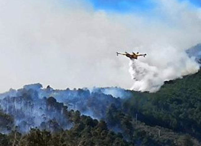 Incendio di Scesta.. canadair in azione[video]