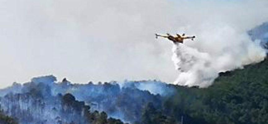 Incendio di Scesta.. canadair in azione[video]