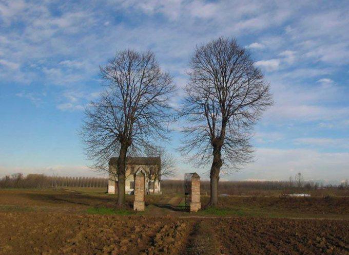 Le antiche usanze: i pioppi al cancello.