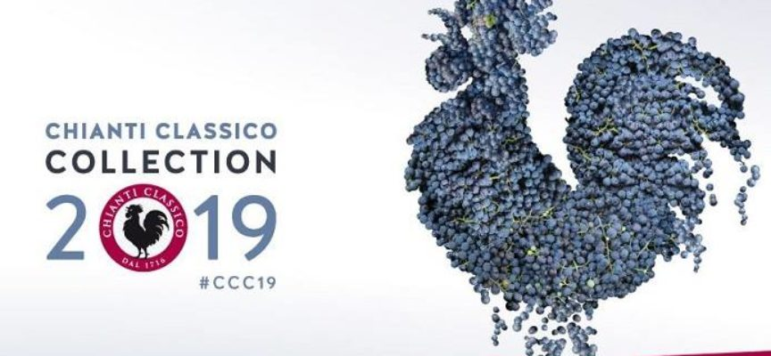 Chianti Classico Collection 2019