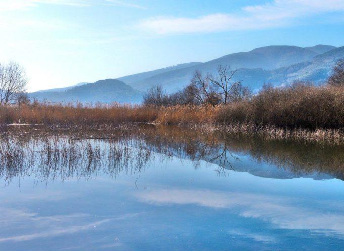 """L'Oasi Wwf """"Bosco del Bottaccio"""" di Castelvecchio di Compito, uno degli angoli più incontaminati del territorio domenica 10 febbraio riapre"""
