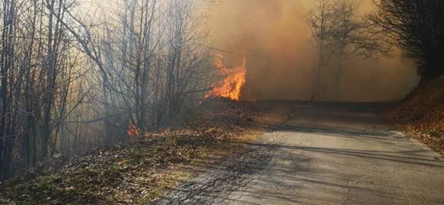 Ancora fiamme nei boschi della Garfagnana