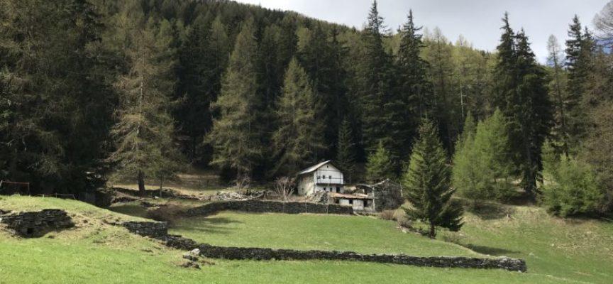 Progetto Alpe: il nostro patrimonio sopra i 1000 metri di altezza