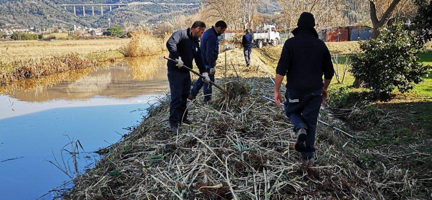 Massarosa, conclusi i lavori di pulizia dell'argine de canale Fugatore a Quiesa