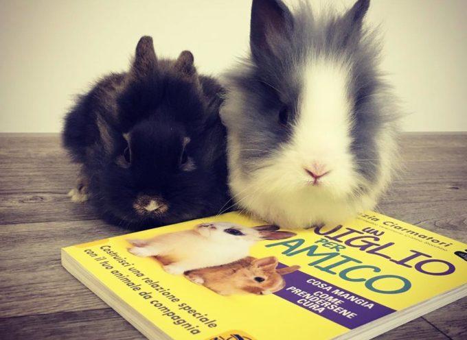 Un coniglio per amico Venerdì 22 febbraio la presentazione del libro con informazioni e consigli utili