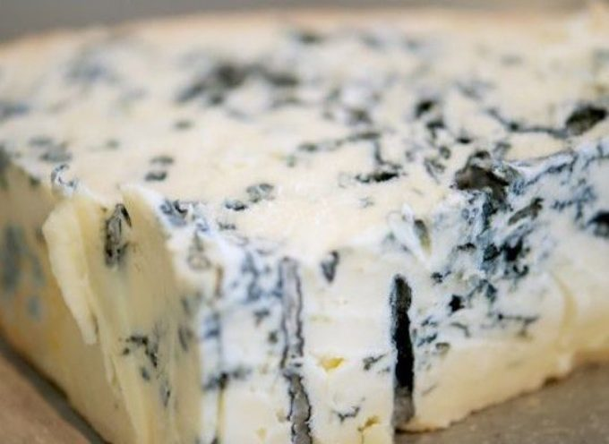 Nuovo richiamo Gorgonzola Dop contaminato da Listeria. Un lotto a marchio COLLE MAGGIO