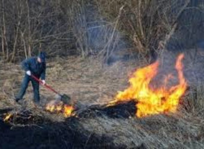 LUCCA – Rischio incendi: divieto di bruciare residui vegetali all'aperto