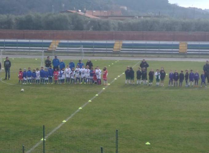 Seravezza-Pozzi Calcio asd: Primi Calci, si torna in campo dopo le vacanze