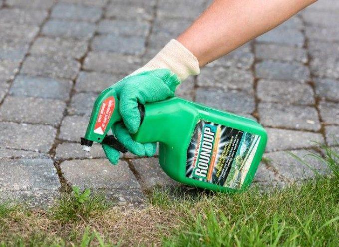 Bayer nei guai: utili in forte calo e oltre 11mila cause legali contro il glifosato