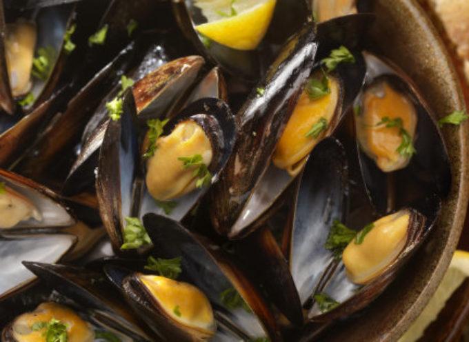 Cozze dalla Spagna contaminate da salmonella, allarme in Italia. Se mangiate crude si rischiano conseguenze anche gravi per la salute.