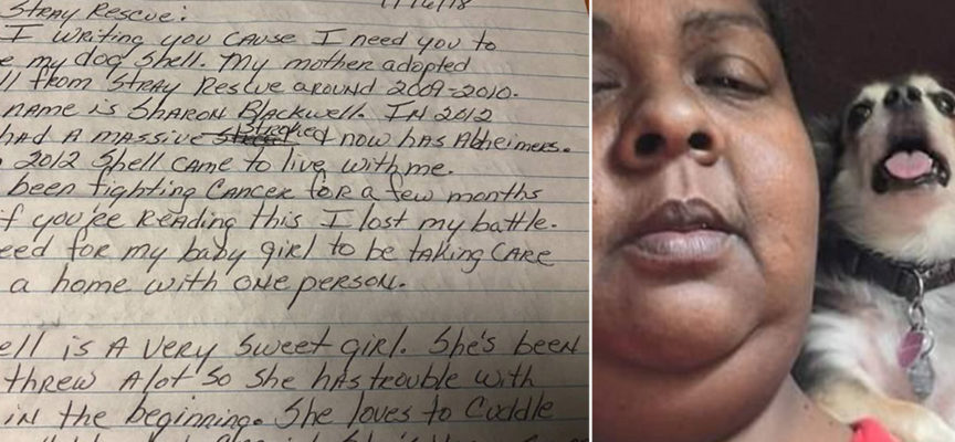 Donna terminale si spara dopo aver lasciato una lettera al canile per il suo cane
