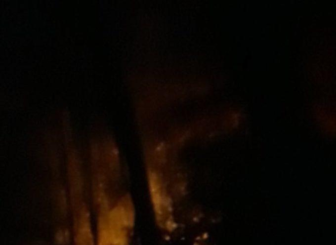 Seravezza: in località Le Salde è di nuovo incendio