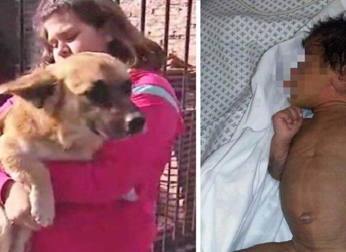 Un cucciolo salva la vita a un neonato abbandonato in un sacchetto di plastica