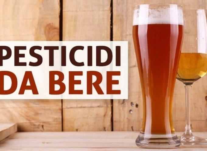 Birra e vino al glifosato: ecco LE MARCHE che contengono pesticidi