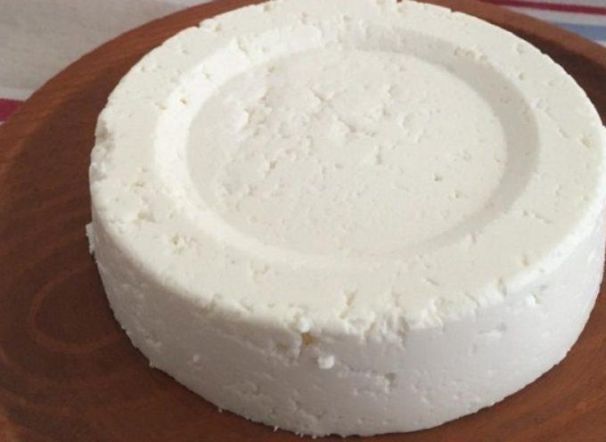 Basta 1 litro di latte per fare del formaggio fatto in casa: ecco la ricetta da provare subito