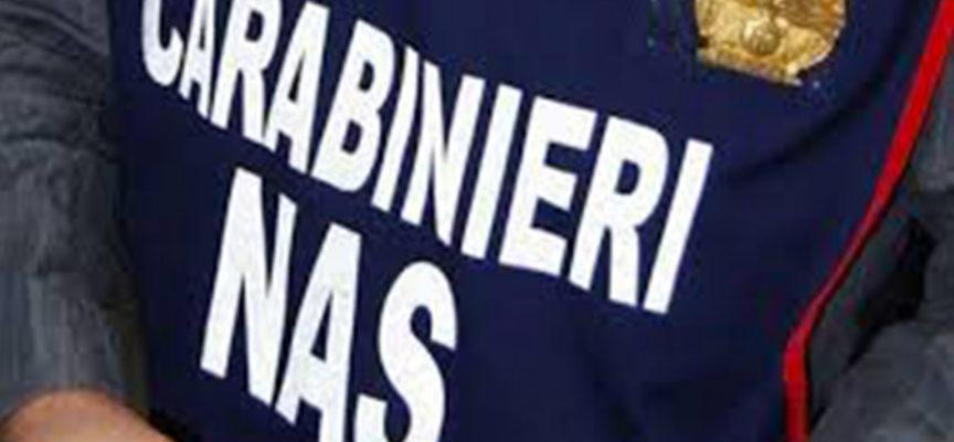 CAPANNORI – Troppo sporco nel laboratorio, l'Asl sospende l'attività di un panificio