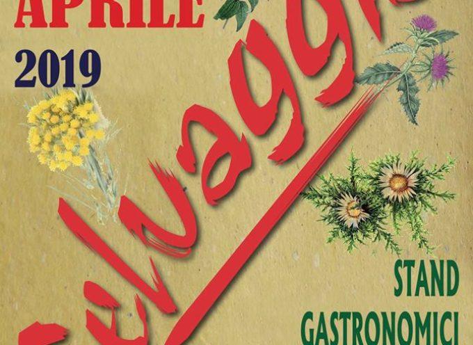 SELVAGGIA A CASTELNUOVO DI GARFAGNANA, IL 13 E 14 APRILE