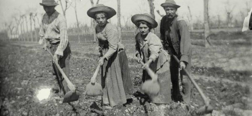 Iniziano ad aumentare i lavori nei campi e zappare era uno dei più faticosi.