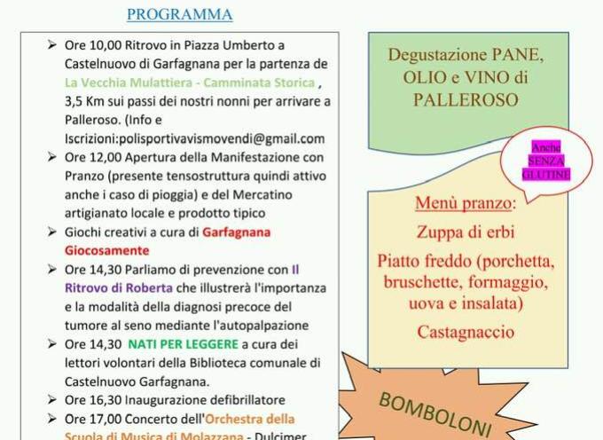 FESTIVAL DELLE FRAZIONI DOMENICA 24 A PALLEROSO