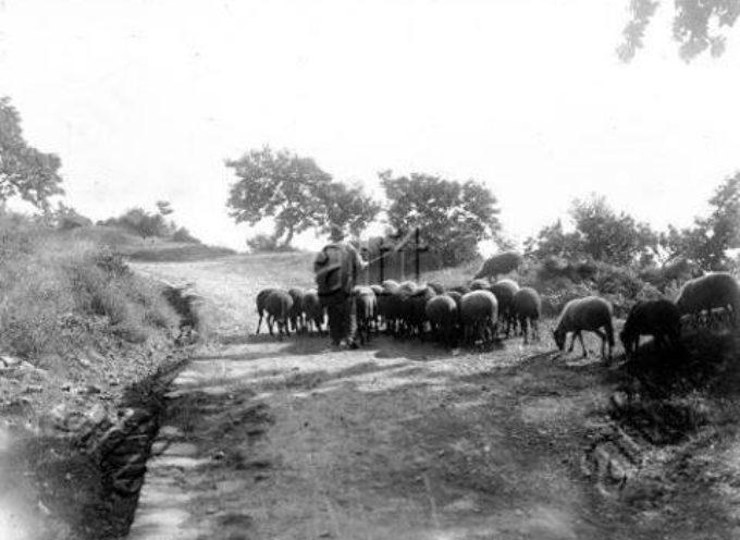 La transumanza dei pastori, il loro vagare alla ricerca dei pascoli.