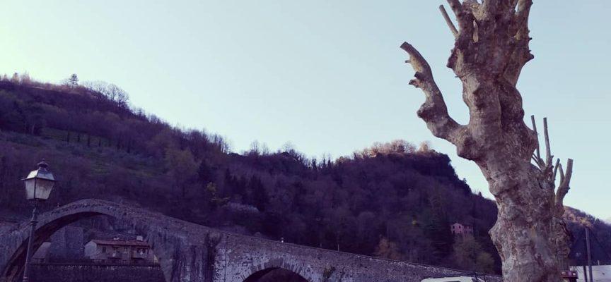 Oggi al Ponte del Diavolo è in corso il taglio piante e il ripristino della grata lungo fiume,