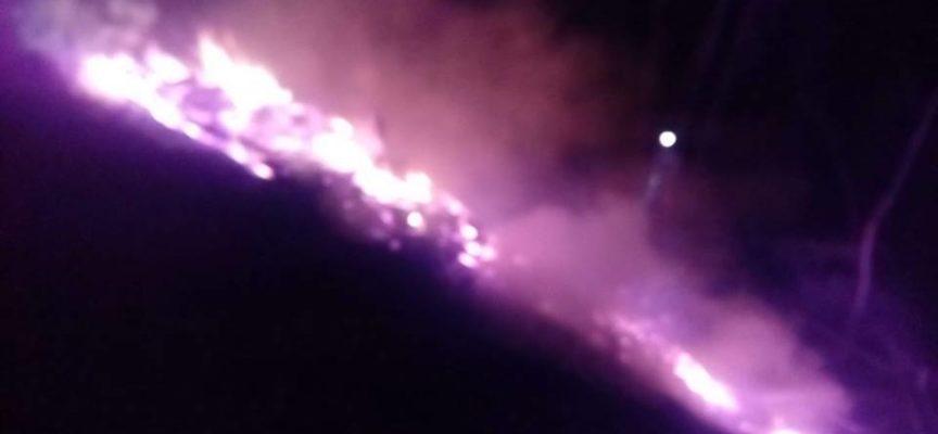 Incendio boschivo in atto in zona di Cerreto, Borgo a Mozzano