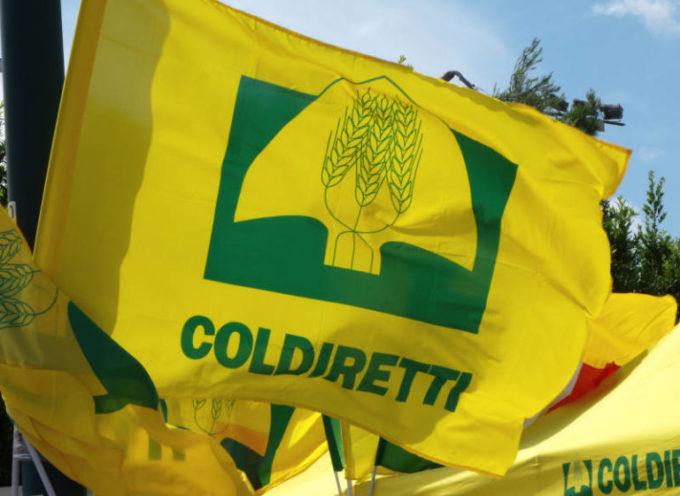 Coldiretti – Bio Profumo Versiliese al Salone Internazionale Biologica