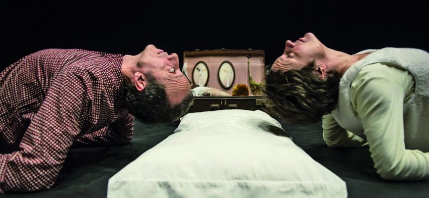 """17 marzo_Rassegna teatro ragazzi_compagnia tardito/rendina presenta """"L'anatra, la morte e il tulipano""""_ Tenuta Dello Scompiglio di Vorno (Lucca)"""