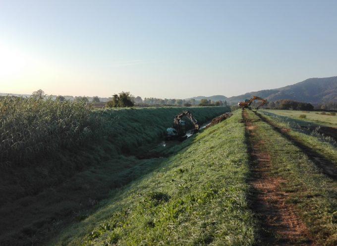Rio Leccio a Porcari, cresce l'impegno del Consorzio: nell'ultimo triennio investiti 280mila euro.