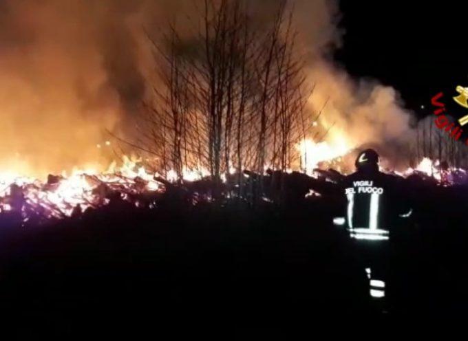 PIETRASANTA – A fuoco stoccaggio di verde: si indaga per incendio doloso